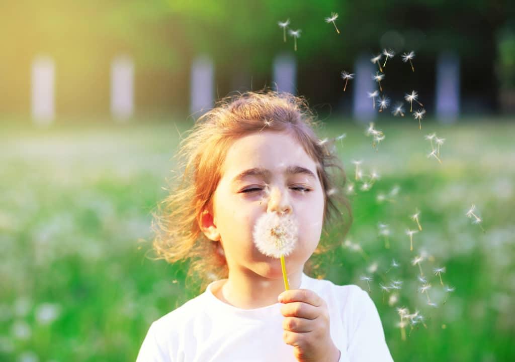 a happy little girl blowing on a dandelion